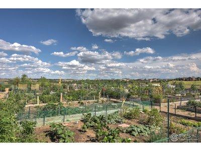 HOA Community Garden area