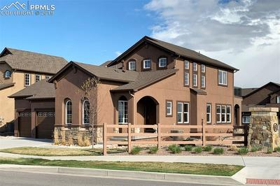Gorgeous two-story home located on .3 acres in desirable Wolf Ranch and school district 20.