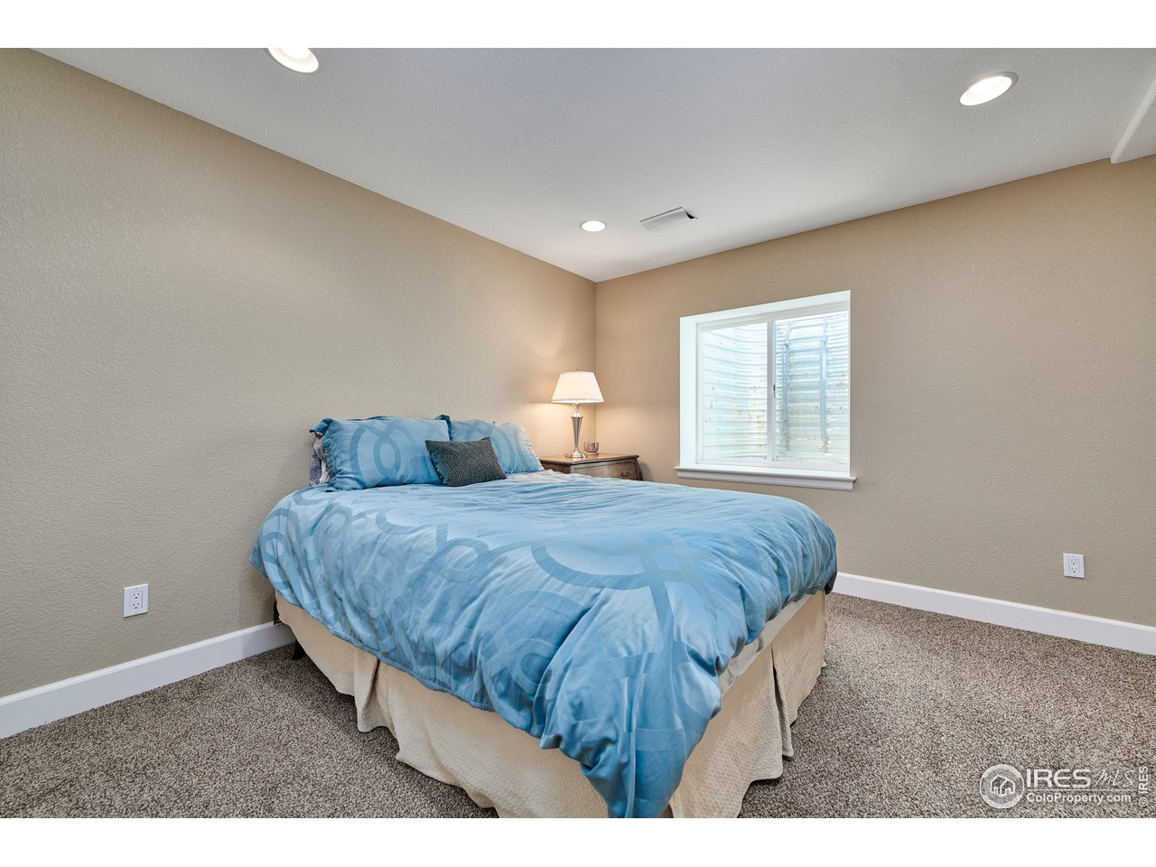 Lower Level 4th Bedroom