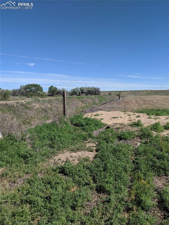 Looking North down West property line