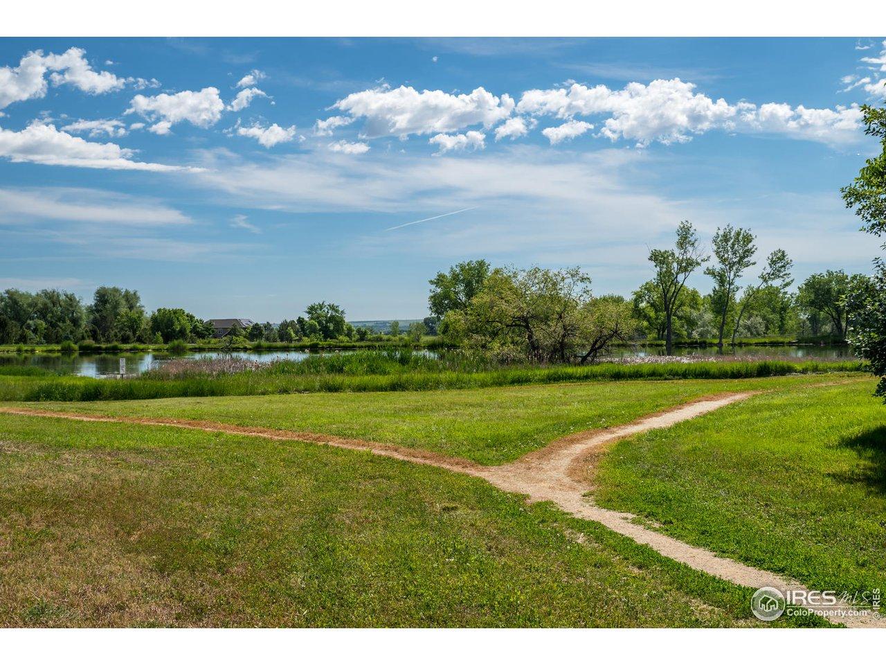 Walking Trails to Pond