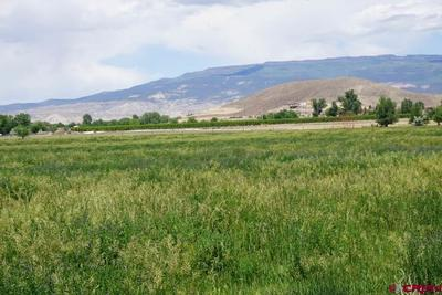 Looking northwest toward Grand Mesa