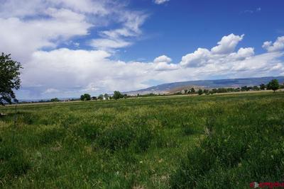 Looking east toward West Elk mountains