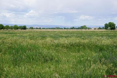From north edge of property, looking southwest with San Juan mountains at far le
