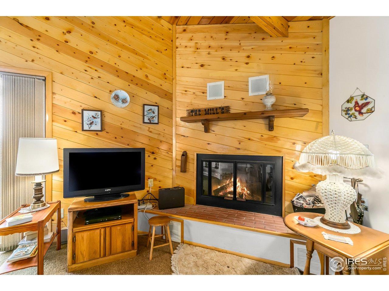 Satellite TV service available Wood burning fireplace