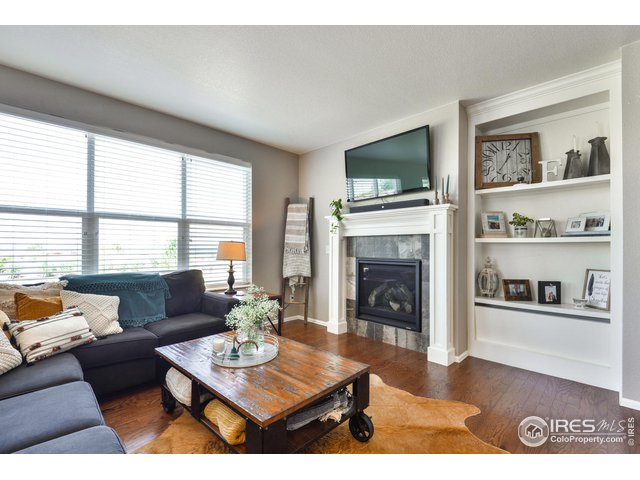 Gas Fireplace and Built In Shelving