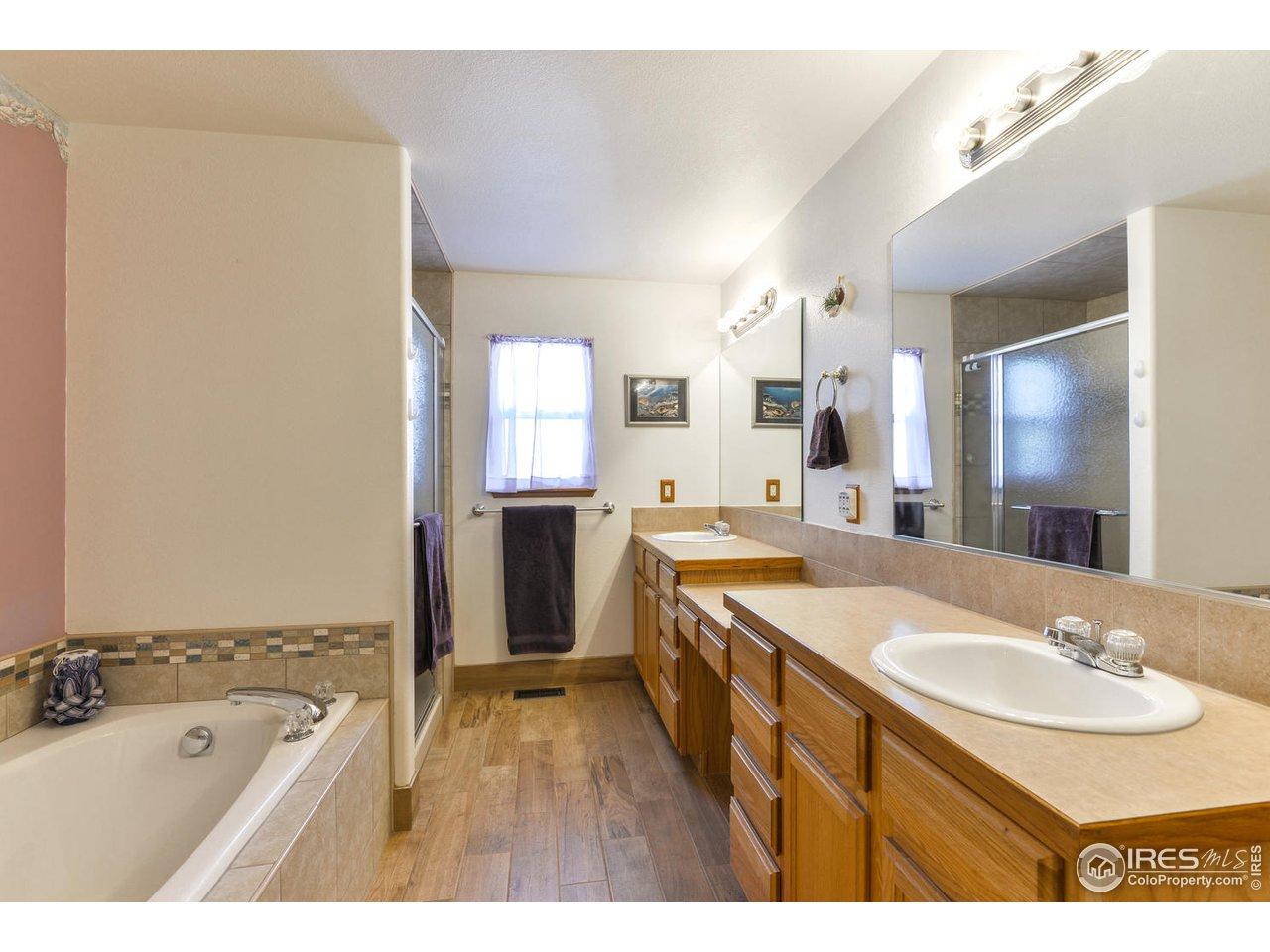 5-piece Master Bath w/ Heated Tile Floors