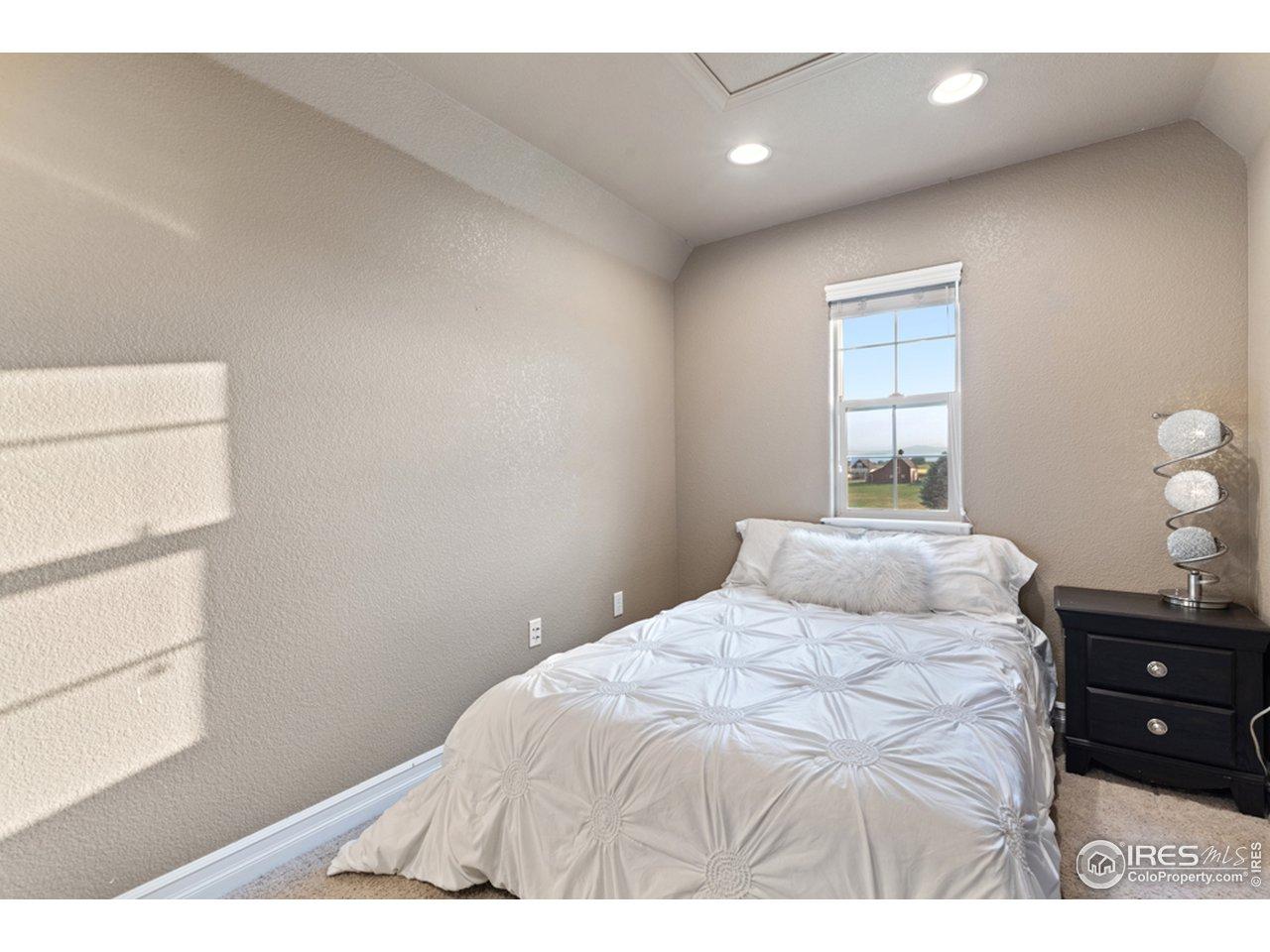Bedroom #2 (mini master)