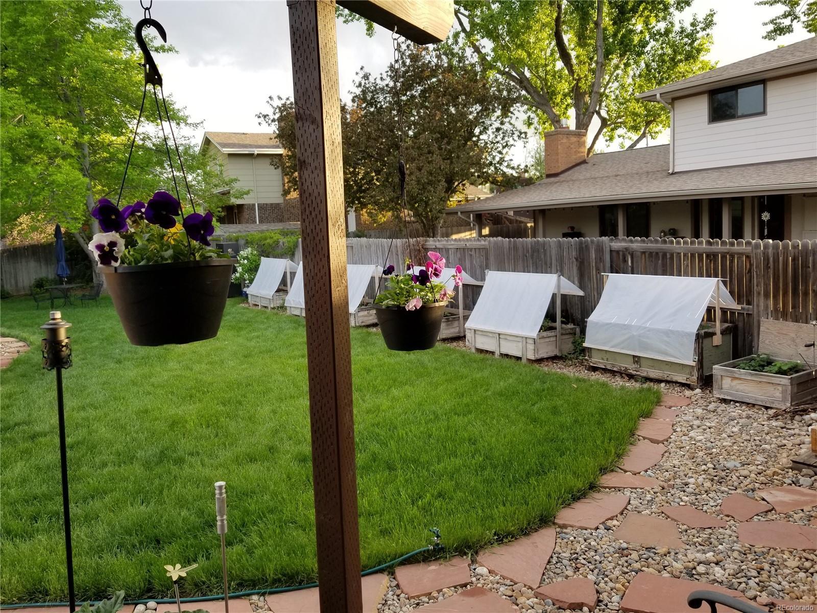 Movable Sprinkler System In Backyard Keeps Everything GREEN!