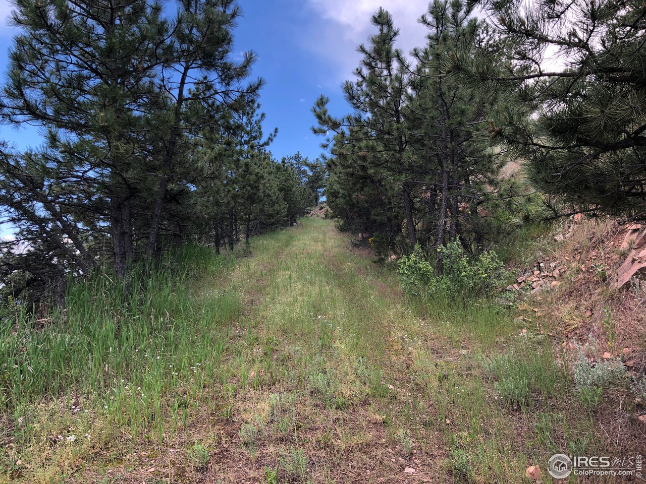 South West Property Boundry