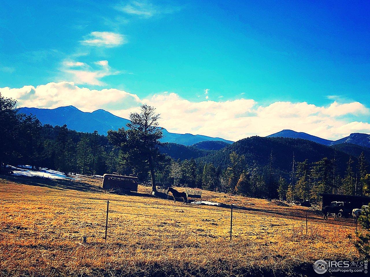 Horse Pasture views of Mt Meeker