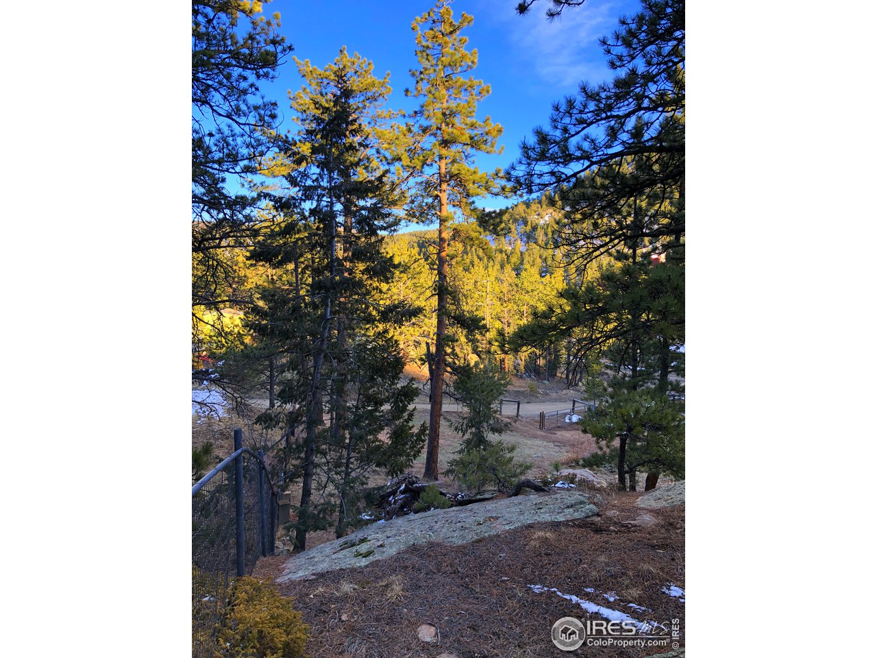 Instant access to Roosevelt National Forest