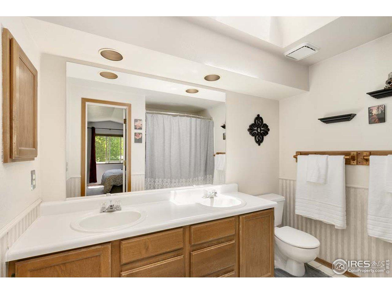 Master Bathroom w/skylight