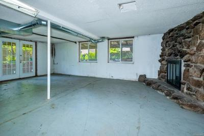 Doesn't feel like a basement. Walkout Basement with Stone Wood Burning Fireplace