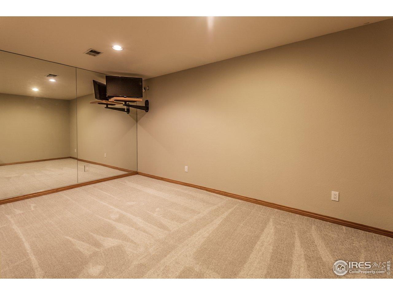 Workout room - basement