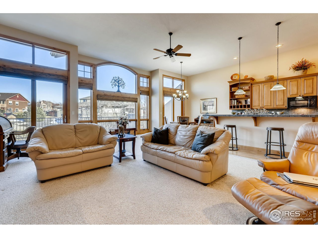 Views from Living/Dining Rooms and Kitchen