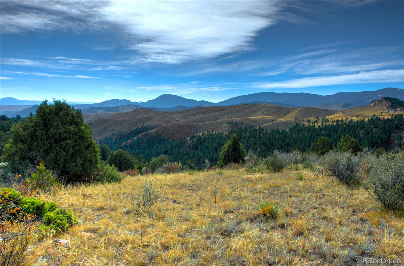 35 Acres with Stunning Views